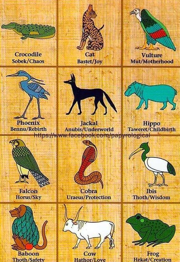 Животные Древнего Египта
