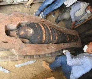 Новая гробница открытия в Сакарре
