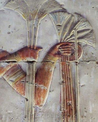 Лотос символ солнца