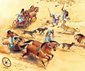 Гиксосы ввели в Египет лошадь и колесницу